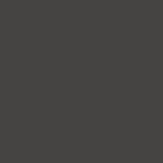 Wordpress logotipas